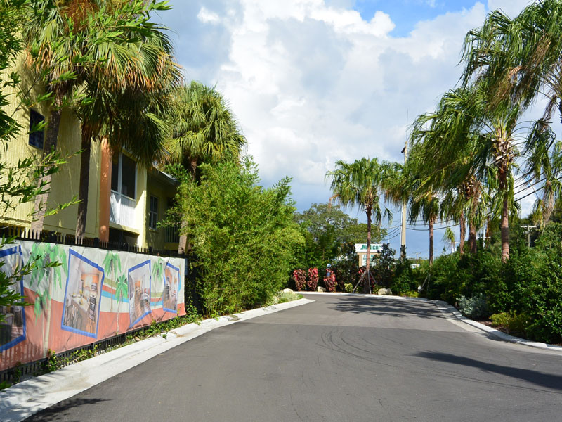 Palm Tree Lined Entrance